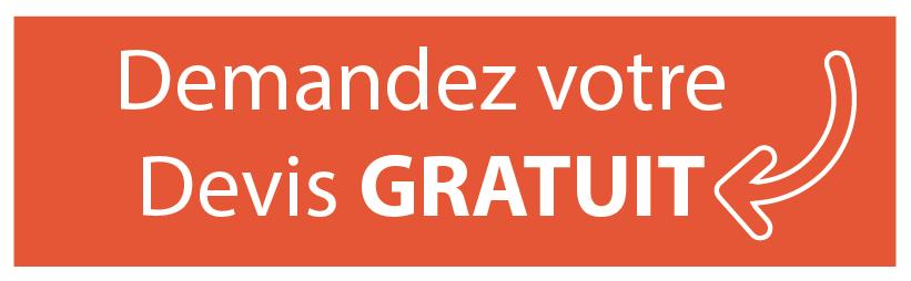 cours anglais Paris Lyon Bordeaux Toulouse ...